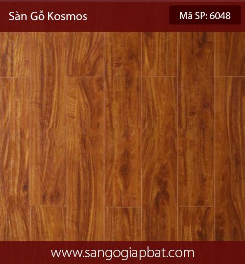 Kosmos6048