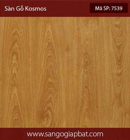Kosmos7539