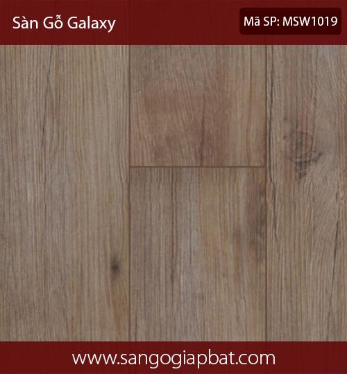 GalaxyMSW1019