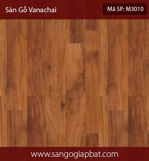VanachaiM3010